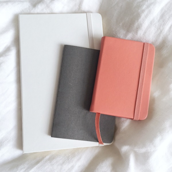 Journal (Moleskine - £15); Paperback Notebook (Christmas present); Mid-Year Diary (Paperchase - £6)
