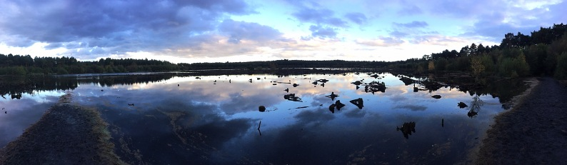"""Blakemere Moss in Delamere Forest. Delamere means """"Forest of Lakes""""."""