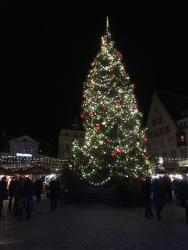 Merry Christmas from Tallinn!
